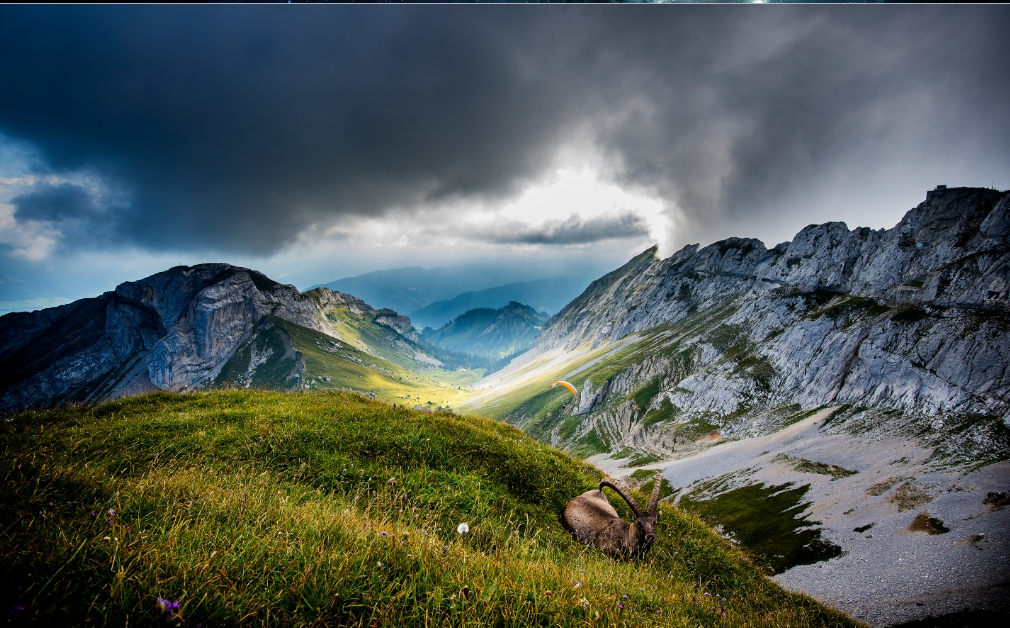 nature wallpapers for desktop download 7
