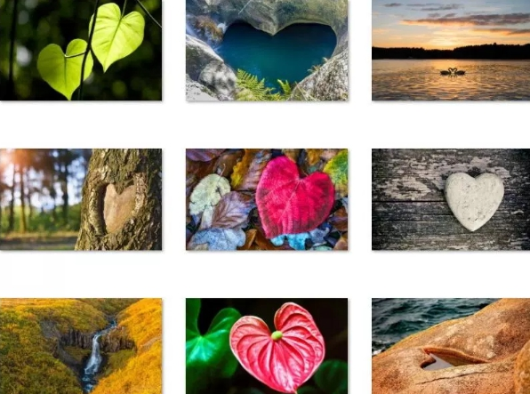 hearts in nature windows 10 theme